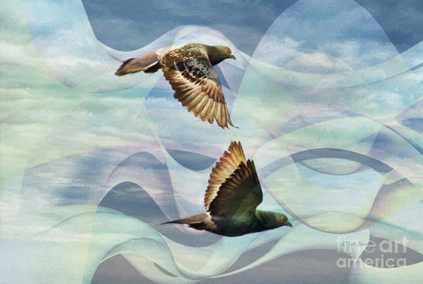 Painting - Pigeon Art by Deborah Benoit