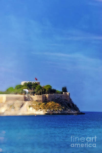 Wall Art - Photograph - Pigeon Island by HD Connelly
