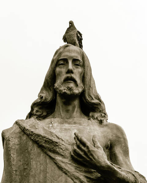 Photograph - Pigeon Sitting On The Head Of Jesus Statue by Jacek Wojnarowski