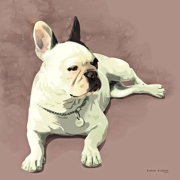 French Bulldog Painting - Piglet by Simon Sturge