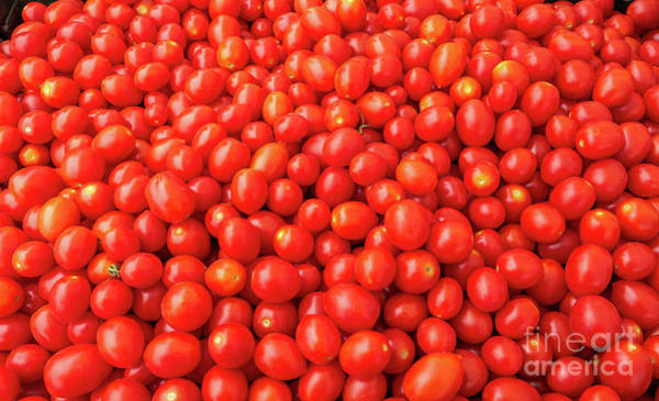 Photograph - Pile Of Small Tomatos For Sale In Market by PorqueNo Studios