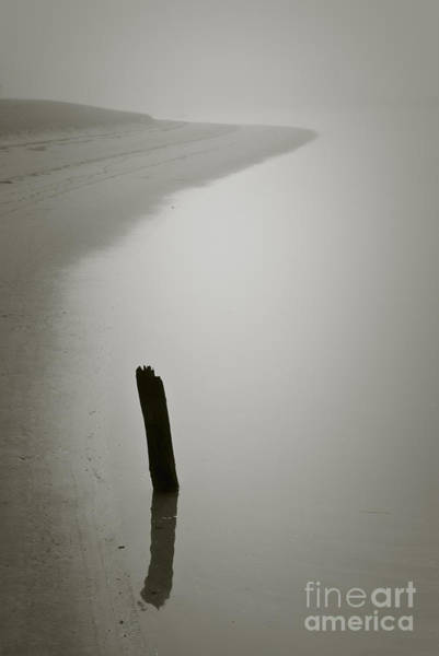 Photograph - Piling And Shore's Edge by Dave Gordon