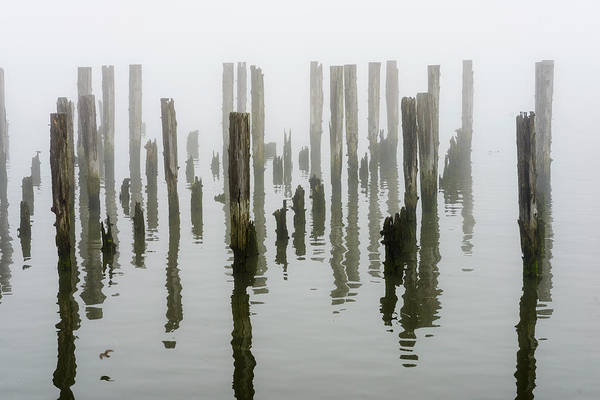 Photograph - Pilings And Reflection by Robert Potts
