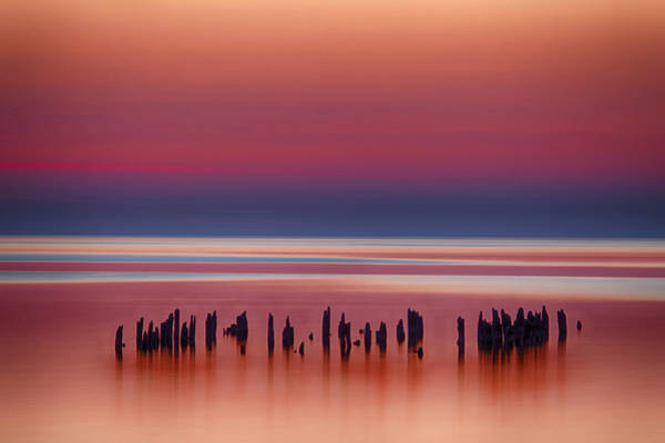 Photograph - Pilings by CA  Johnson