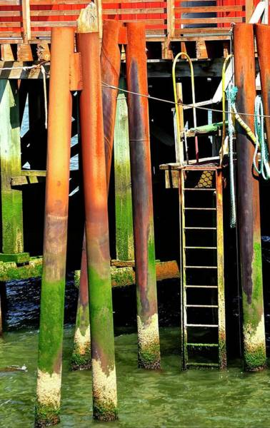 Photograph - Pilings by Jerry Sodorff