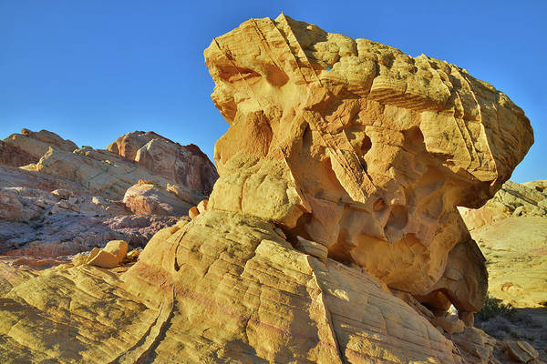 Photograph - Pillar Of Gold In Valley Of Fire by Ray Mathis
