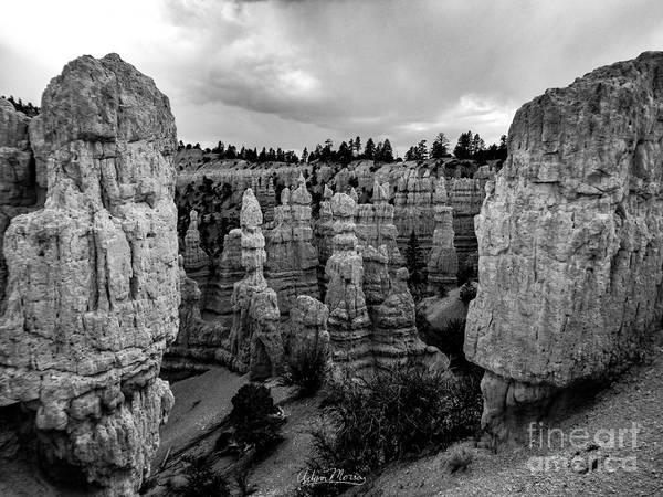 Photograph - Pillars Of Creation, Black And White by Adam Morsa