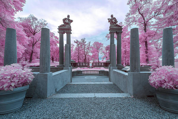 Photograph - Pillars With Pink by Brian Hale