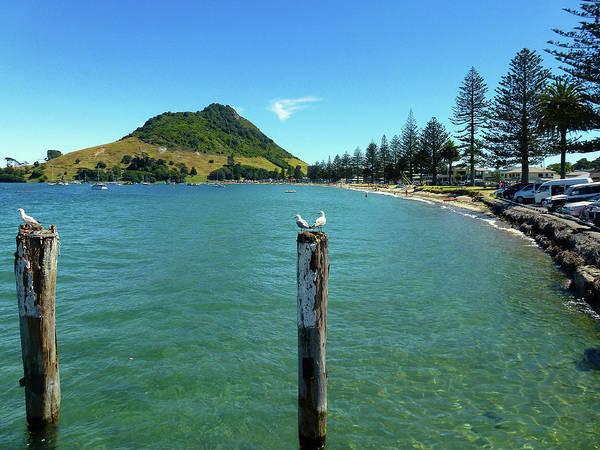 Photograph - Pilot Bay Beach 1 - Mt Maunganui Tauranga New Zealand by Selena Boron