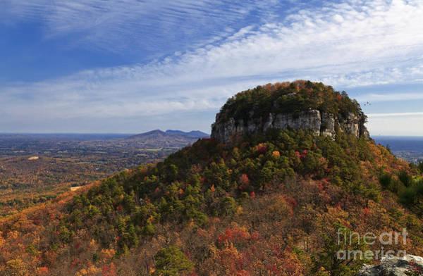 Photograph - Pilot Mountain by Jill Lang