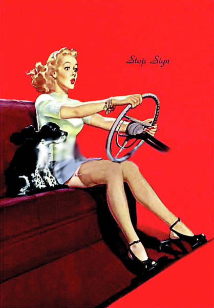 Wall Art - Painting - Pin Up Girl In Mini Dress Driving A Car With Dog On Front Seat by Long Shot