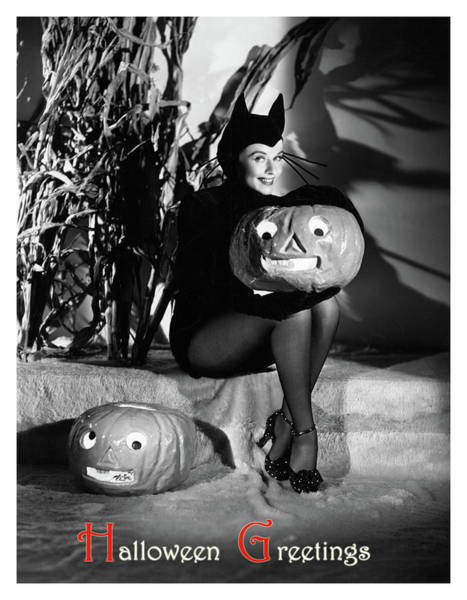 Black Cats Photograph - Pin Up Woman In Cat Costume Posing With Pumpkins by Long Shot