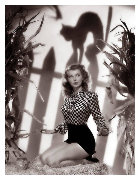 Halloween Photograph - Pin Up Woman Posing With Black Cat Shadow by Long Shot