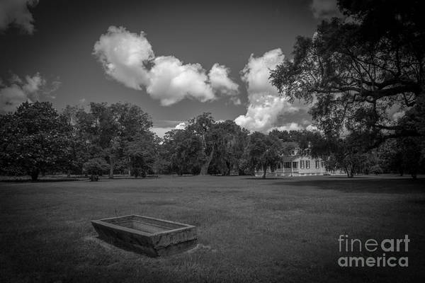 Photograph - Pinckney In Black And White by Dale Powell