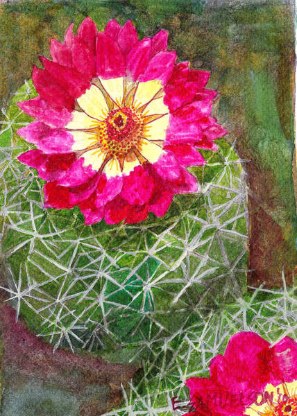 Painting - Pincushion Cactus by Eric Samuelson