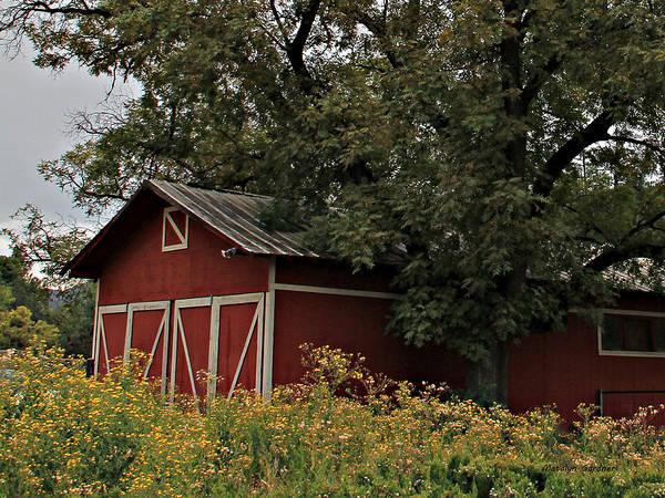 Photograph - Pine Barn by Matalyn Gardner
