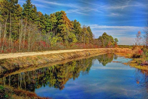 Wall Art - Photograph - Pine Barrens Of New Jersey by Geraldine Scull