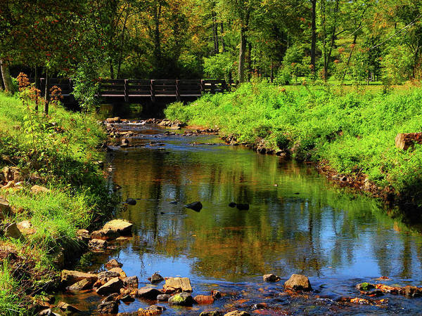 Photograph - Pine Grove Furnace State Park Is Part Of The Pa At by Raymond Salani III