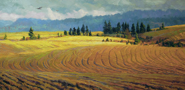 Wheat Wall Art - Painting - Pine Grove by Steve Henderson