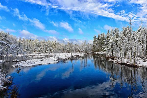 Photograph - Pine Lands Winter Wonder Land by Louis Dallara