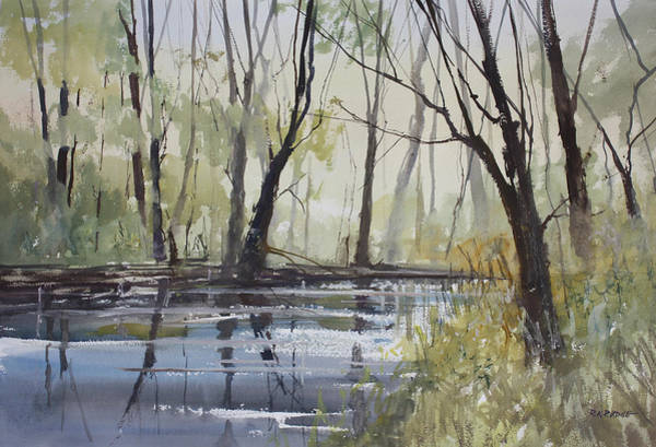Pine Forest Painting - Pine River Reflections by Ryan Radke