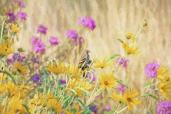 Wall Art - Photograph - Pine Siskin Bird In The Garden by Jennie Marie Schell