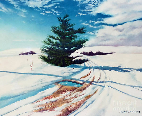 Painting - Pine Tree Along The Country Road by Christopher Shellhammer