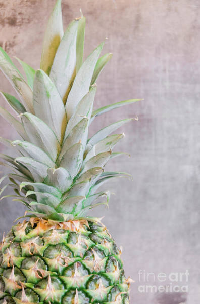 Photograph - Pineapple 7 by Andrea Anderegg