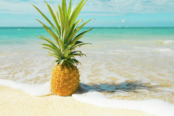 Photograph - Pineapple Beach by Sharon Mau