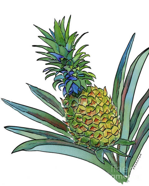 Painting - Pineapple by Diane Thornton