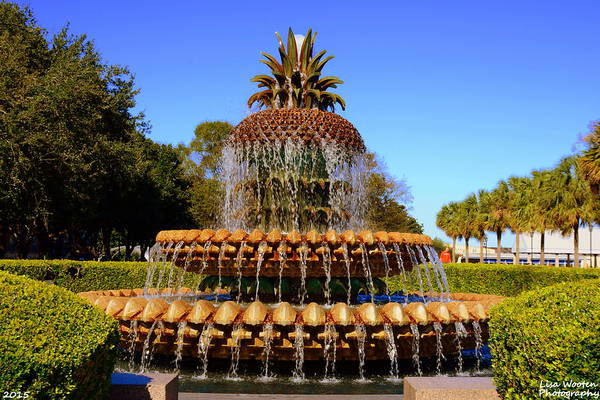 Photograph - Pineapple Fountain Charleston Sc by Lisa Wooten