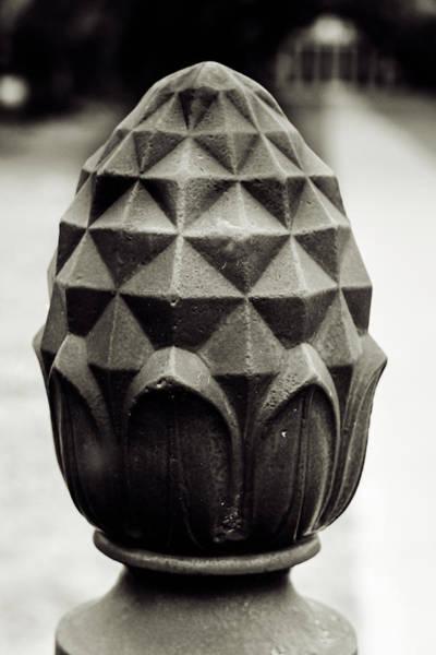Photograph - Pineapple, Oak Alley, Vacherie, Louisiana by Chris Coffee