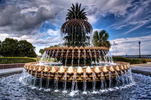 Wall Art - Photograph - Pineapple Storm by Drew Castelhano