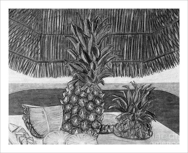 Pineapples Drawing - Pineapple by Tracy Pickett