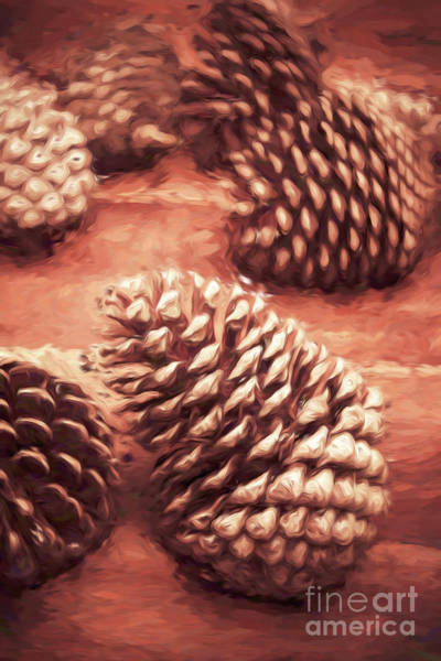 Photograph - Pinecone Painting by Jorgo Photography - Wall Art Gallery