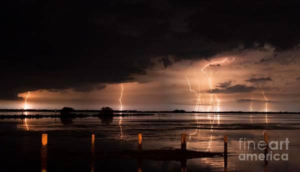 Bolts Photograph - Pineland Nights by Quinn Sedam