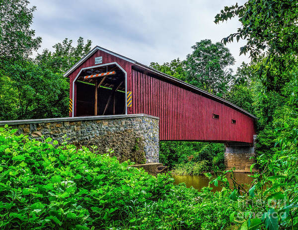 Photograph - Pinetown Covered Bridge by Nick Zelinsky