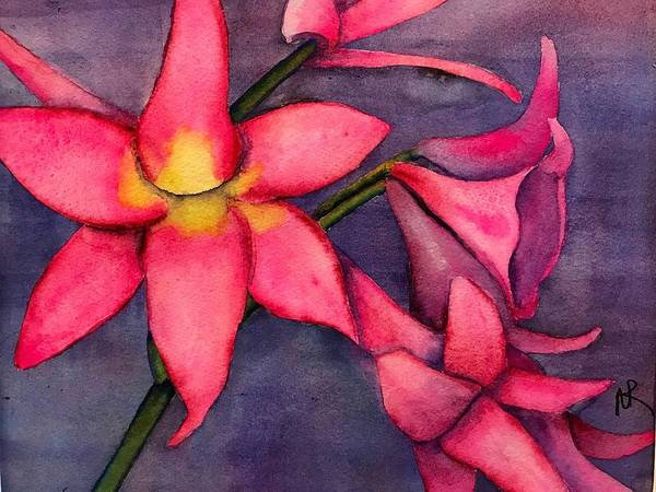 Amaryllis Painting - Pink Amaryllis Bella Donna by Nancy Riedell