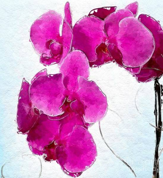 Wall Art - Digital Art - Pink Appeal by Anthony Fishburne