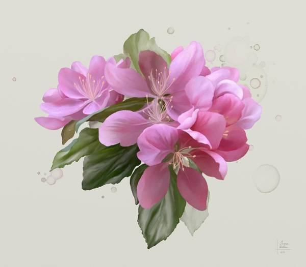 Painting - Pink Blossoms by Ivana Westin