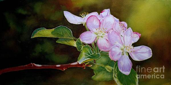 Painting - Pink Blossoms by Greg and Linda Halom