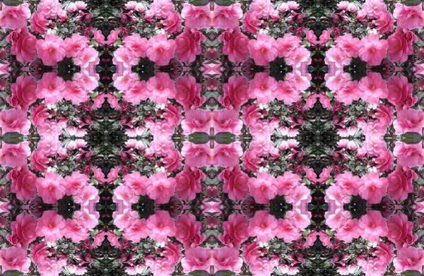 Photograph - Pink Bush Flower Multi Photo Design by Julia Woodman