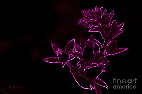 Photograph - Pink Cactus Flower by Donna Bentley