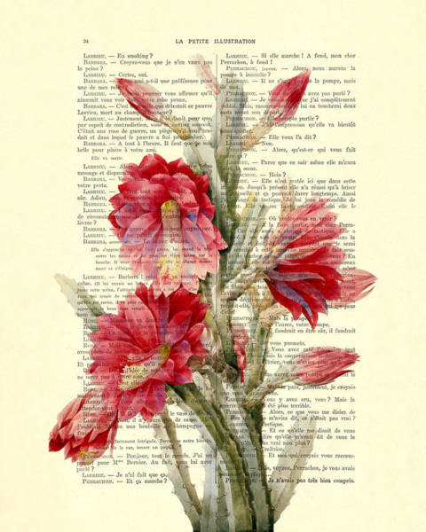Cactus Flower Wall Art - Digital Art - Pink Cactus Flower Vintage Book Page Collage by Madame Memento