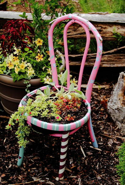 Photograph - Pink Chair Planter by Allen Nice-Webb