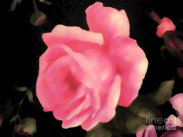 Painting - Pink Fabric Rose Thick Paint by Catherine Lott
