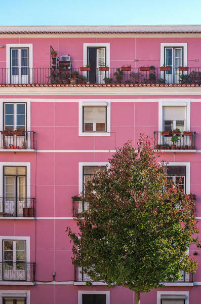 Wall Art - Photograph - Pink Facade by Carlos Caetano
