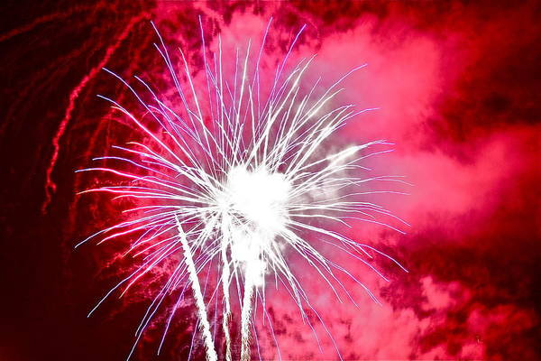 Photograph - Pink Fireworks by Diana Hatcher