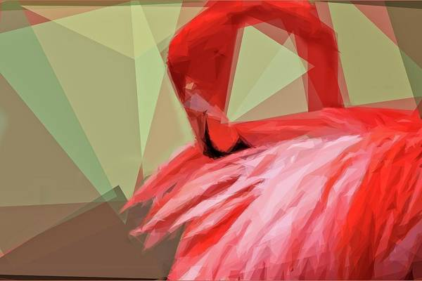 Photograph - Pink Flamingo Angles by Alice Gipson