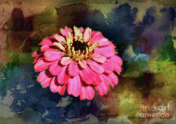 Painting - Pink Floral by Deborah Benoit